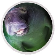 The Happy Manatee Round Beach Towel