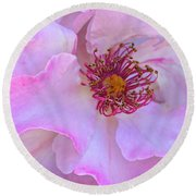 The Heart Of A Rose Round Beach Towel by Venetia Featherstone-Witty