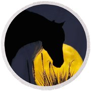 The Horse In The Moon Round Beach Towel