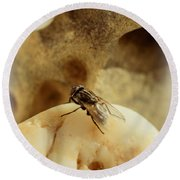 The Housefly V Round Beach Towel