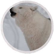 Round Beach Towel featuring the photograph The Howler by Bianca Nadeau