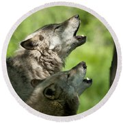 Round Beach Towel featuring the photograph The Howling by Wolves Only