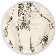 The Human Skeleton Round Beach Towel