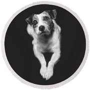The Jack Russell Stare- Got Ball? Round Beach Towel