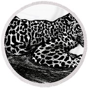 The Jaguar  Round Beach Towel