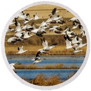 Round Beach Towel featuring the photograph The Journey by Jack Bell