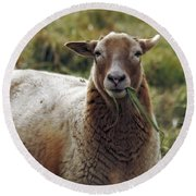 Feed My Sheep Round Beach Towel