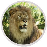 The Lion King Round Beach Towel