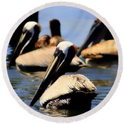The Lovely Pelican  Round Beach Towel by Debra Forand