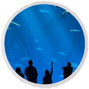 The Magnificent Open Sea Exhibit At The Monterey Bay Aquarium. Round Beach Towel