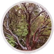 The Manzanita Tree Round Beach Towel