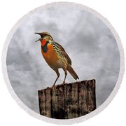 The Meadowlark's Song Round Beach Towel by Elizabeth Winter