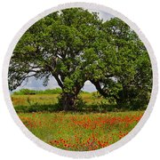 The Mighty Oak Round Beach Towel