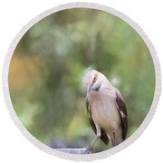 The Mockingbird Round Beach Towel by David and Carol Kelly