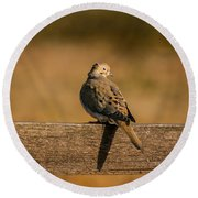 The Morning Dove Round Beach Towel