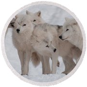 Round Beach Towel featuring the photograph The Pack by Bianca Nadeau