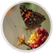 The Painted Lady Round Beach Towel