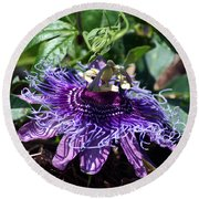The Passion Flower Round Beach Towel
