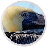 The Pelican Round Beach Towel