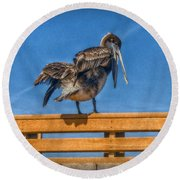 Round Beach Towel featuring the photograph The Pelican by Hanny Heim