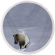 The Ponys Trail Round Beach Towel