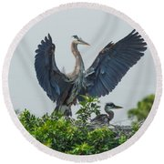 The Protector Round Beach Towel by Susan Molnar