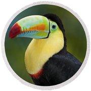 The Rainbow Bird.. Round Beach Towel