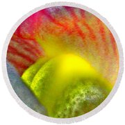The Snapdragon - Flower Round Beach Towel