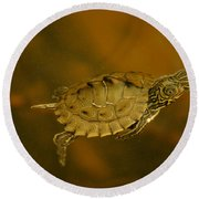 The Southeastern Map Turtle Round Beach Towel by Kim Pate