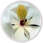 The Southern Magnolia Round Beach Towel by Kim Pate