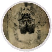 The Spider Series Xiii Round Beach Towel by Marco Oliveira