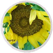 Sunflower Garden Round Beach Towel