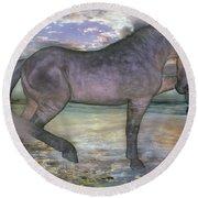 The Sunrise Horse Round Beach Towel