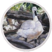 The Swan Round Beach Towel by Lori Brackett