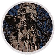 Round Beach Towel featuring the photograph The Tree Of Life by Deborah Klubertanz