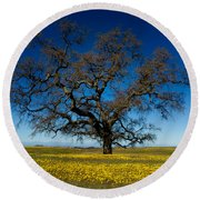 The Tree On Table Mountain Round Beach Towel