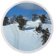 Round Beach Towel featuring the photograph The Trees Take A Snow Day by Michele Myers