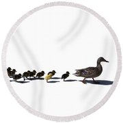 The Ugly Duckling  Round Beach Towel