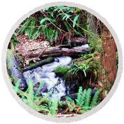 The Unknown Creek Round Beach Towel
