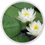 Round Beach Towel featuring the photograph The Water Lilies Collection - 06 by Pamela Critchlow