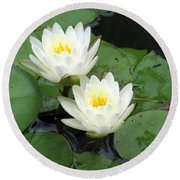 Round Beach Towel featuring the photograph The Water Lilies Collection - 07 by Pamela Critchlow