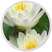Round Beach Towel featuring the photograph The Water Lilies Collection - 09 by Pamela Critchlow
