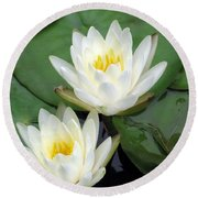 Round Beach Towel featuring the photograph The Water Lilies Collection - 12 by Pamela Critchlow
