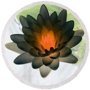 Round Beach Towel featuring the photograph The Water Lilies Collection - Photopower 1035 by Pamela Critchlow