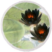 Round Beach Towel featuring the photograph The Water Lilies Collection - Photopower 1039 by Pamela Critchlow