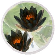 Round Beach Towel featuring the photograph The Water Lilies Collection - Photopower 1046 by Pamela Critchlow