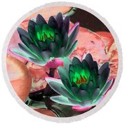 Round Beach Towel featuring the photograph The Water Lilies Collection - Photopower 1120 by Pamela Critchlow