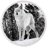 The Wolf  Round Beach Towel
