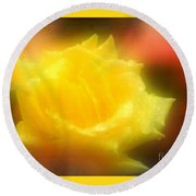 Round Beach Towel featuring the photograph New Orleans  Yellow Rose Of Tralee by Michael Hoard