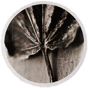 Nature Round Beach Towel featuring the photograph There Is A Season by Aaron Berg
